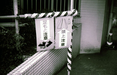 IMG_0603072.jpg